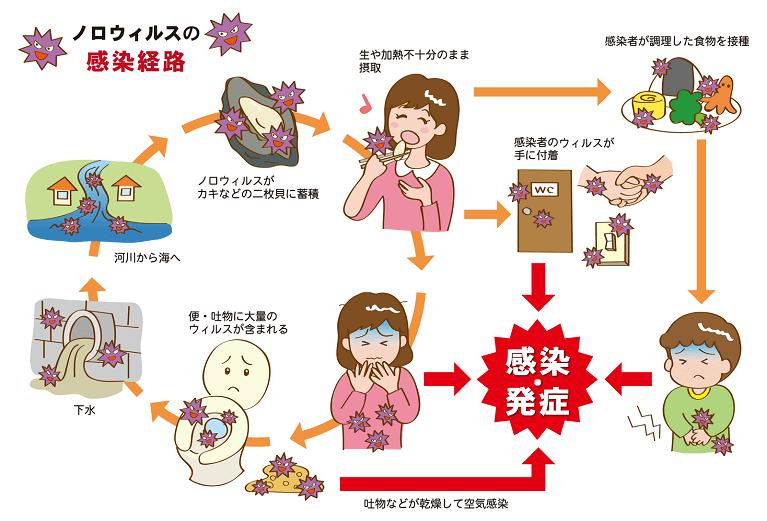 ノロウイルスの感染経路