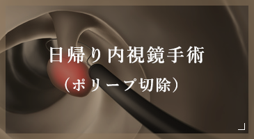 日帰り内視鏡手術(ポリープ切除)